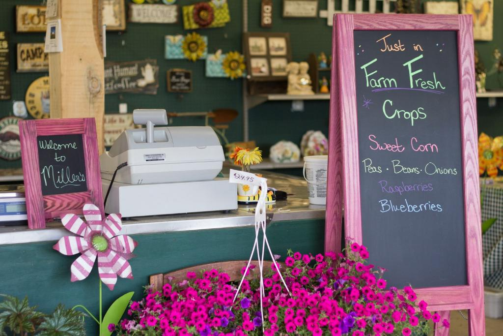 Field Trip: A Visit to the Local Farmers Market