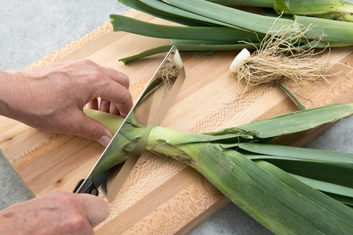 Infographic: How to Cut Leeks