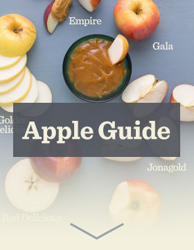 View Apple Guide
