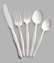 5-Pc. Stainless Place Setting with Dinner Knife