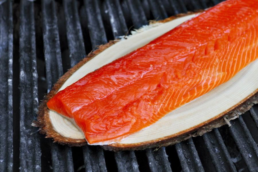 grilled-salmon-12